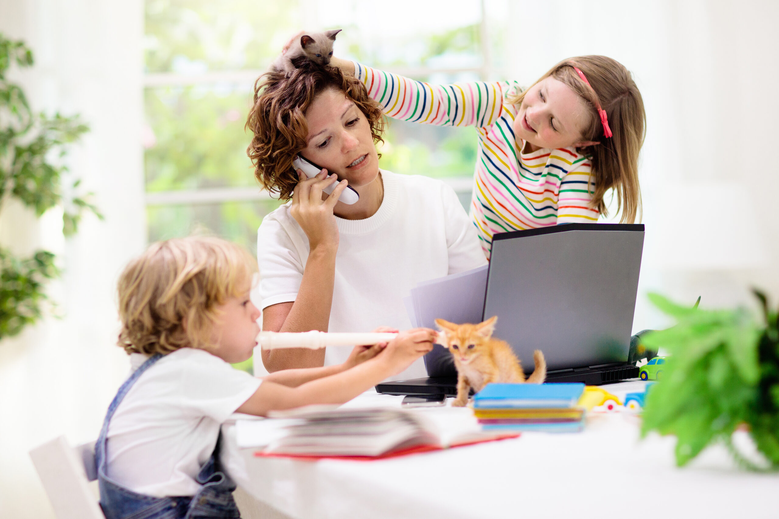 Home learning environment- studying at home